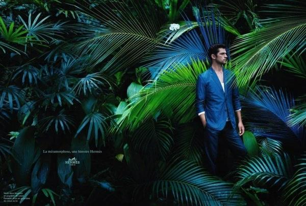 Chiến dịch thời trang nam xuân hè 2014 từ dior homme và hermès - 1