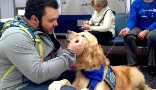 Hãng bay sử dụng chó để trấn an hành khách bị hoãn chuyến - 1