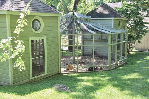 Những chuồng gà sạch và đẹp như ngôi nhà nhỏ - 6