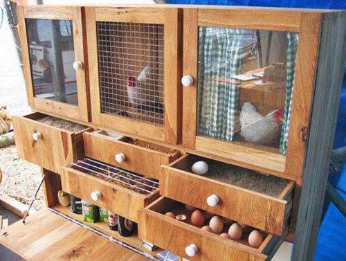 Những chuồng gà sạch và đẹp như ngôi nhà nhỏ - 9