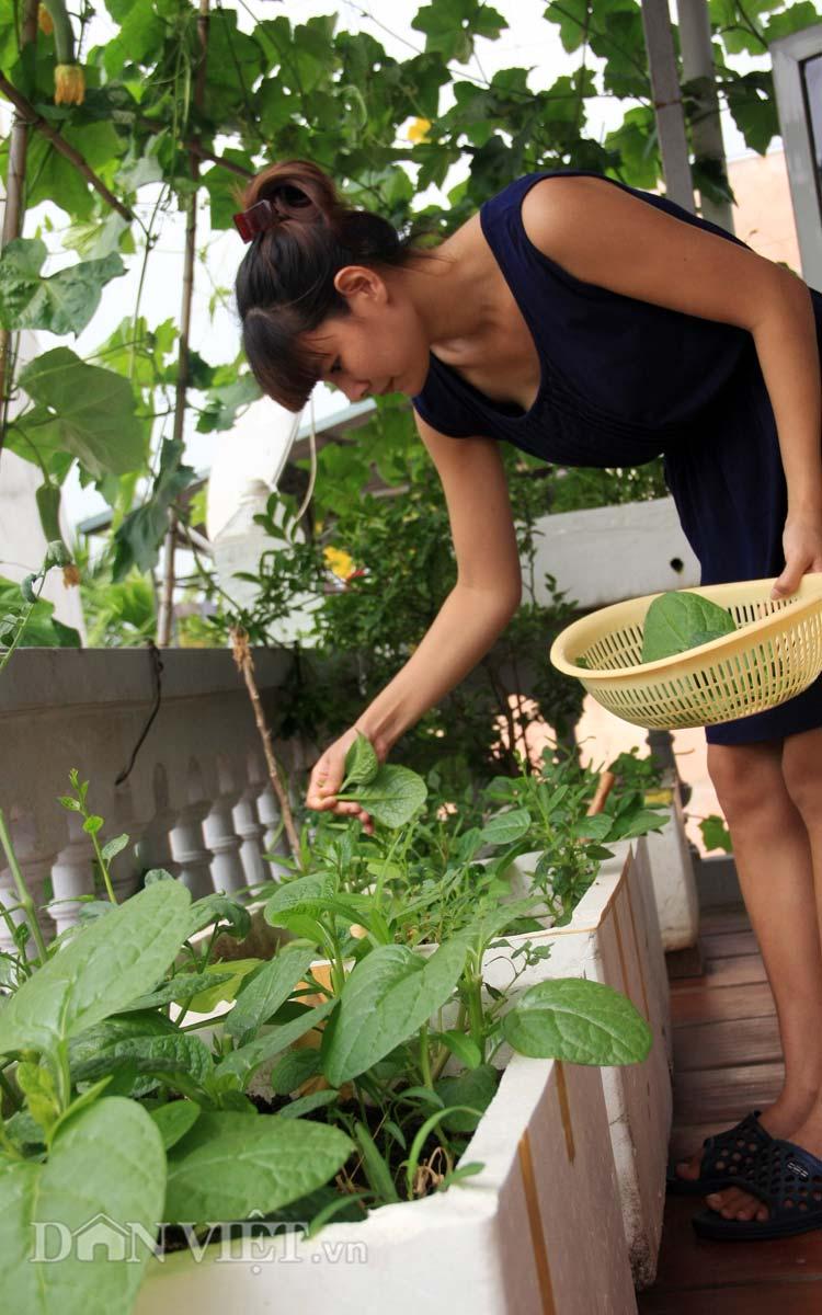 Chăm vườn rau sân thượng - tuyệt chiêu cơm lành canh ngọt của vợ chồng trẻ - 11