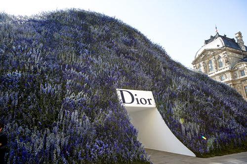 Mùa hoa oải hương ngập tràn sàn diễn dior - 1