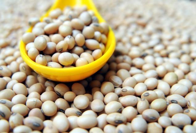 Bí quyết làm bột ngũ cốc giúp các mắm khô nở nang đẹp dáng - 4