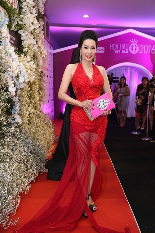 Dàn hoa hậu á hậu việt nam toả sắc trên thảm đỏ hhvn 2016 - 22