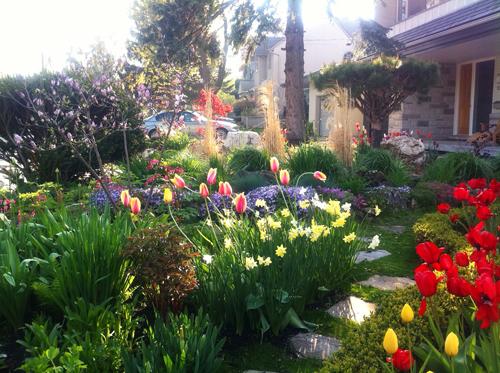 chàng giám đốc nhổ từng cọng cỏ để có khu vườn đẹp - 7
