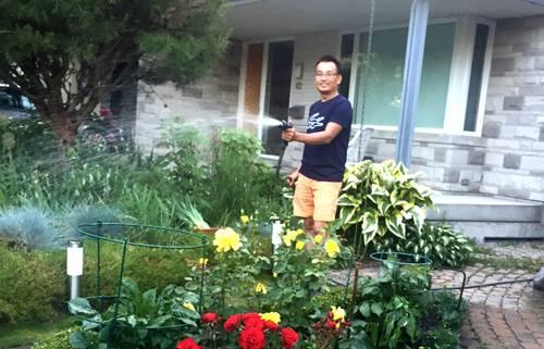 chàng giám đốc nhổ từng cọng cỏ để có khu vườn đẹp - 10