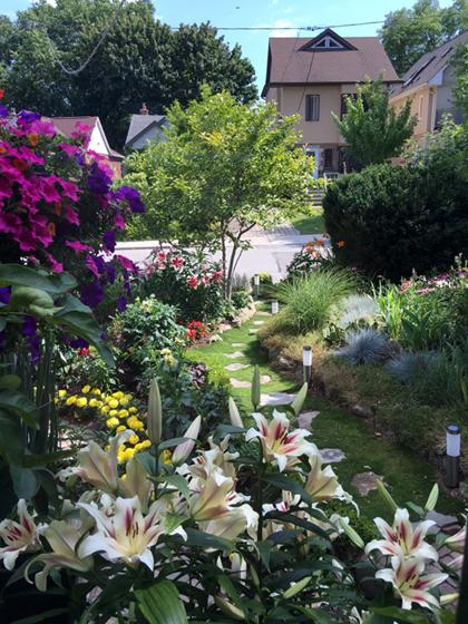 chàng giám đốc nhổ từng cọng cỏ để có khu vườn đẹp - 12
