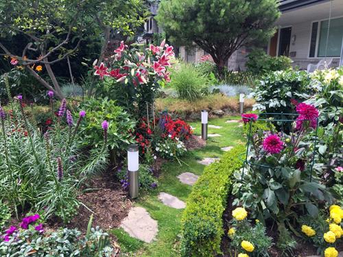 khu vườn cổ tích của chàng giám đốc người việt ở canada - 1