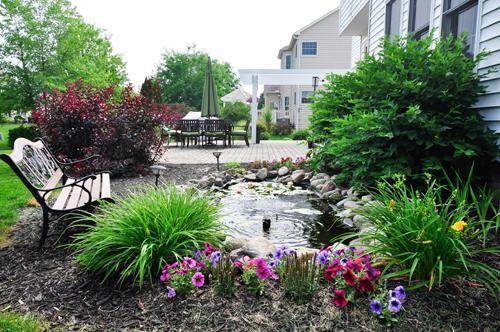 khu vườn ngập sắc hoa của giảng viên người việt ở mỹ - 3