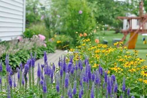 khu vườn ngập sắc hoa của giảng viên người việt ở mỹ - 7
