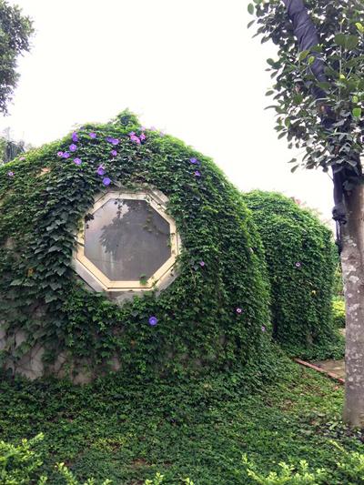 ông bố hà nội làm ngôi nhà tròn kỳ lạ theo ước mơ của con - 10