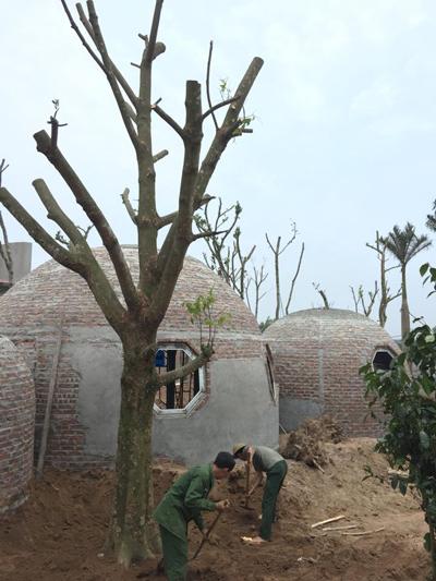 quá trình xây dựng ngôi nhà tròn phủ kín dây leo - 6