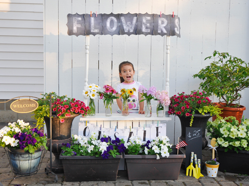 tài trang trí cho ngôi nhà từ hoa trái tự trồng của chị thu hoài - 3