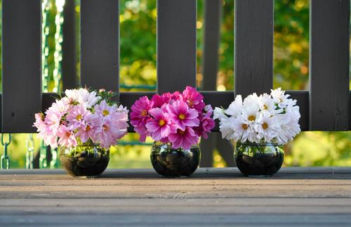 tài trang trí cho ngôi nhà từ hoa trái tự trồng của chị thu hoài - 4