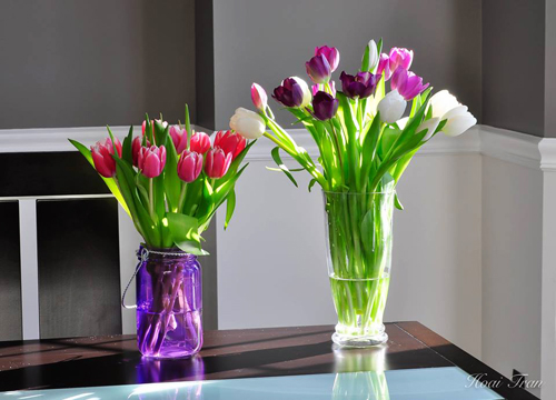 tài trang trí cho ngôi nhà từ hoa trái tự trồng của chị thu hoài - 6