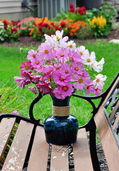 tài trang trí cho ngôi nhà từ hoa trái tự trồng của chị thu hoài - 8