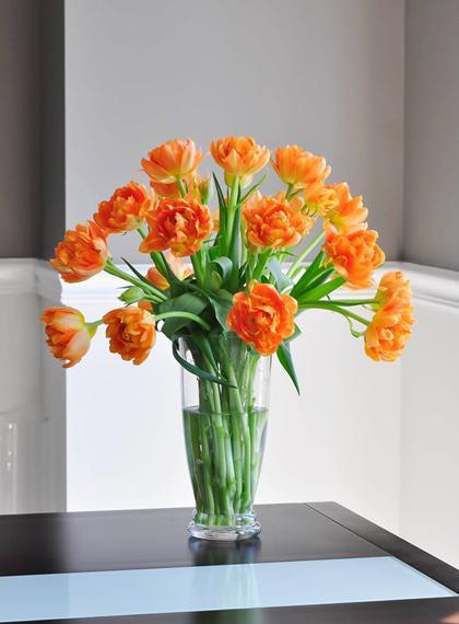 tài trang trí cho ngôi nhà từ hoa trái tự trồng của chị thu hoài - 12