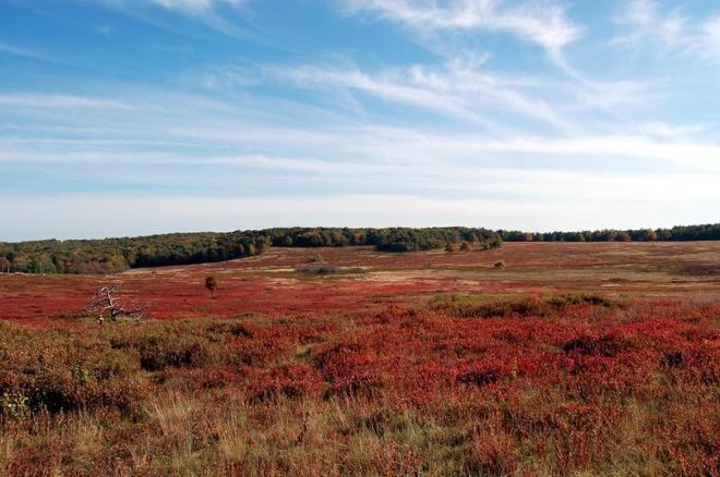 10 công viên đẹp nhất thế giới vào mùa thu - 1