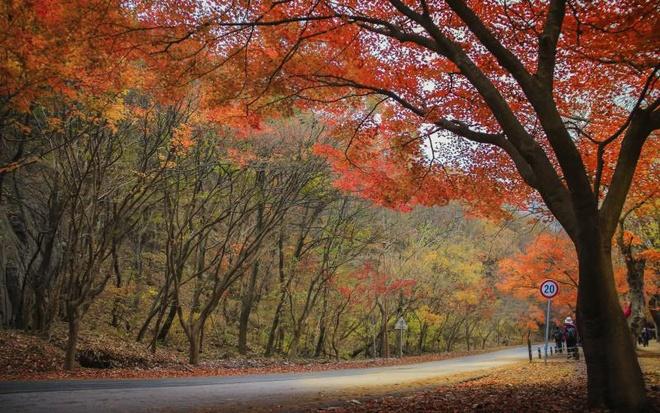 10 công viên đẹp nhất thế giới vào mùa thu - 6