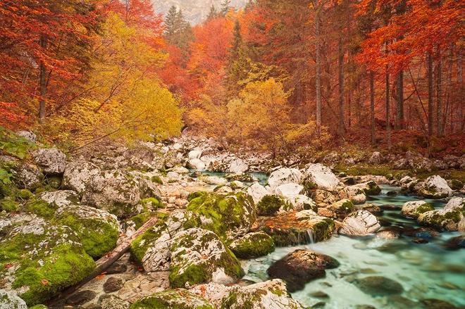 10 công viên đẹp nhất thế giới vào mùa thu - 8
