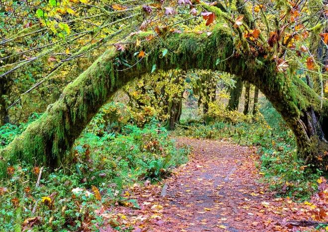 10 công viên đẹp nhất thế giới vào mùa thu - 10