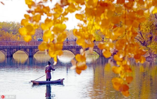 Mùa thu nhuộm sắc vàng ở trung quốc - 2