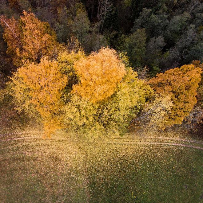 Mùa thu vàng ở lithuania - 4