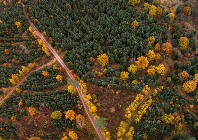 Mùa thu vàng ở lithuania - 5