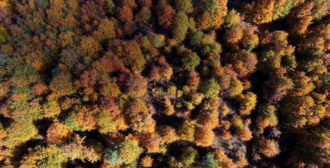 Mùa thu vàng ở lithuania - 7