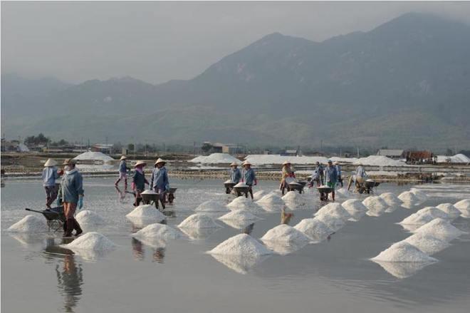 Ruộng muối trắng xóa bên vịnh vân phong - 1