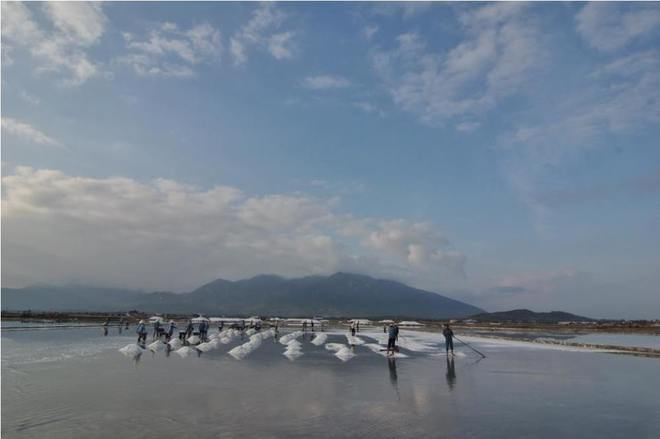 Ruộng muối trắng xóa bên vịnh vân phong - 2