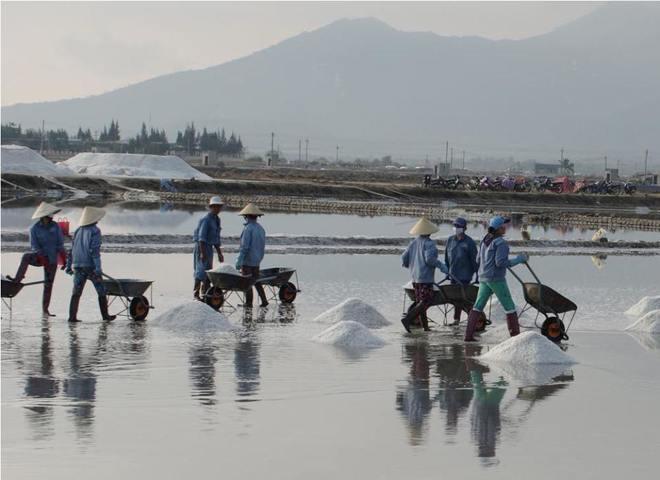 Ruộng muối trắng xóa bên vịnh vân phong - 4