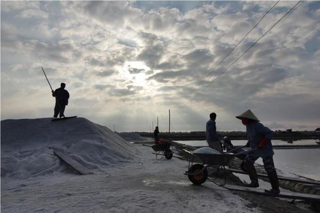 Ruộng muối trắng xóa bên vịnh vân phong - 7