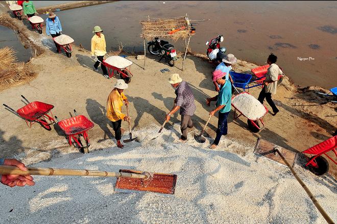 Vẻ đẹp diêm dân trên ruộng muối long điền - 11