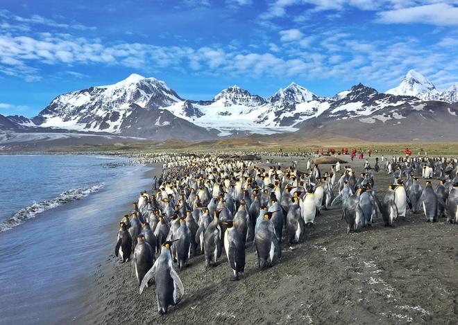 Vẻ đẹp ngoạn mục của thiên nhiên nam cực - 5