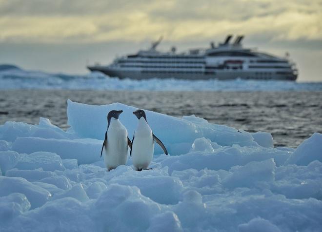 Vẻ đẹp ngoạn mục của thiên nhiên nam cực - 9