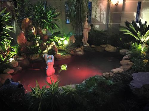 Cao thái sơn khoe hồ cá mới to như bể bơi - 2