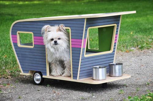 Choáng váng những căn hộ đắt tiền nhất cho thú cưng - 11