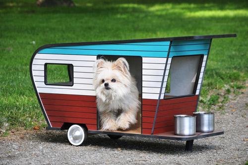 Choáng váng những căn hộ đắt tiền nhất cho thú cưng - 13