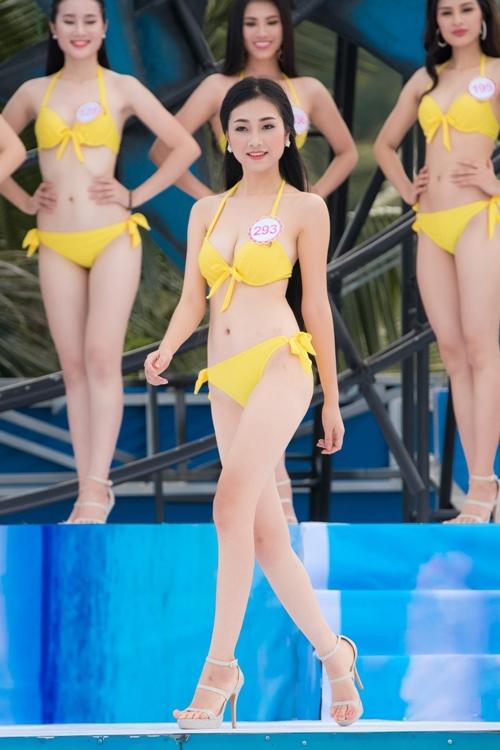 Hhvn 2016 top 36 thí sinh khoe body nóng bỏng hơn bao giờ hết - 8