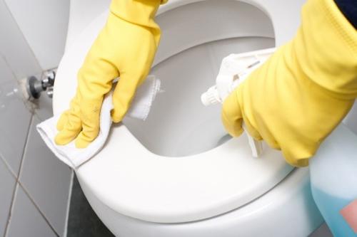 Bày chị em vệ sinh bồn cầu đúng cách không hại da tay - 2