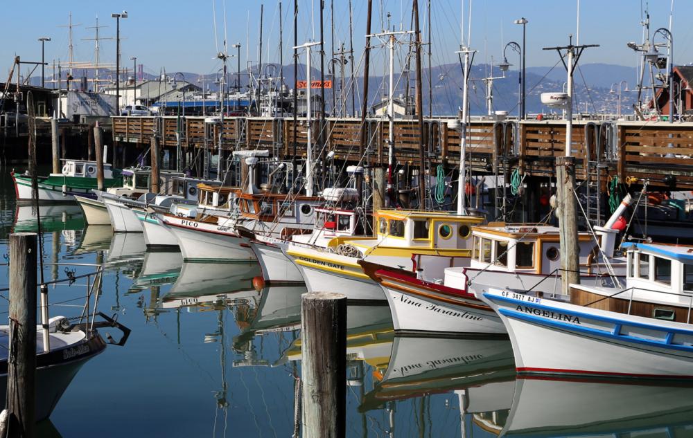 Những điểm đến ở california làm nức lòng dân sống ảo - 7